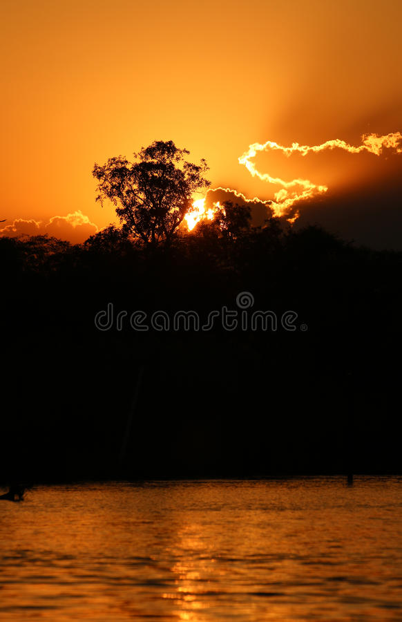 Okavango rzeka obraz royalty free