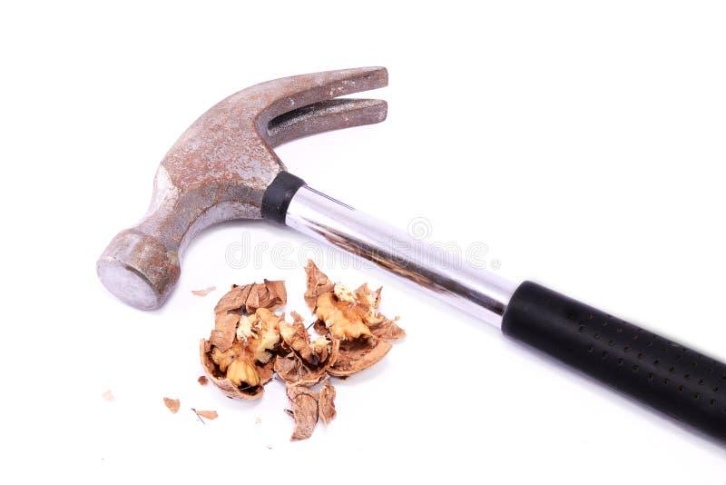 Okkernoot die door een hamer wordt verpletterd royalty-vrije stock afbeelding