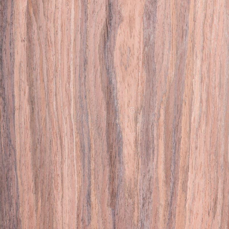 Okkernoot, houten korrel royalty-vrije stock afbeelding