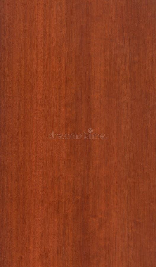 Okkernoot Houten Textuur stock fotografie