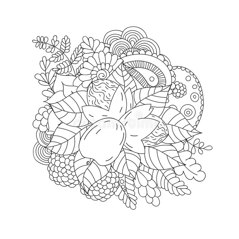 okkernoot Zwart-wit krabbelpatroon stock illustratie