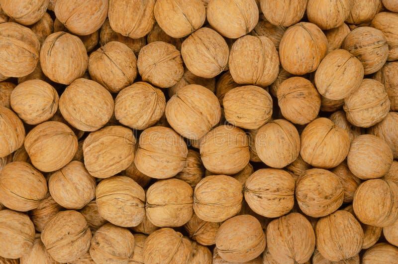 Okkernotenachtergrond, stapel van unshelled noten stock foto's