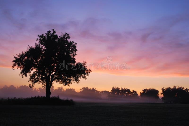 oklahoma mgłowy wschód słońca zdjęcia stock