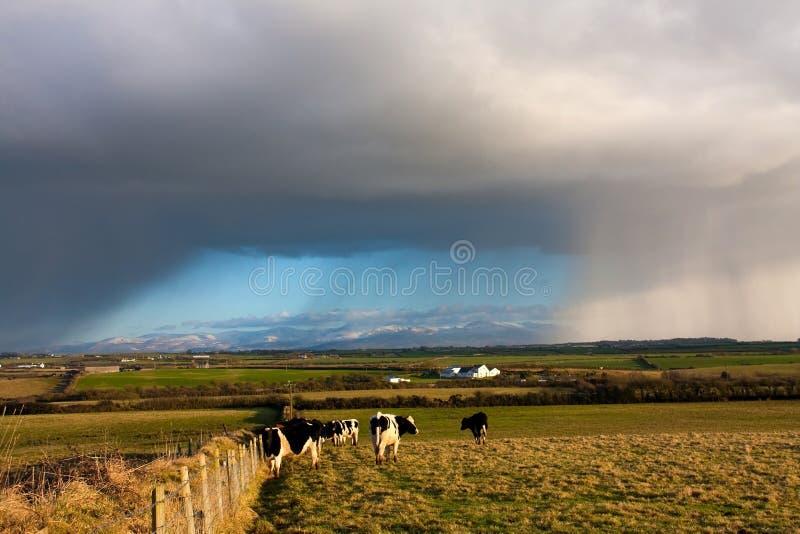 oklarhetshagelstorm fotografering för bildbyråer
