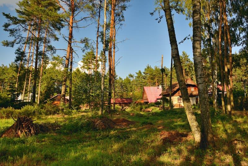 Okna, república checa - 14 de julho de 2018: muitas casas de campo de madeira na madeira de pinho durante o por do sol do feriado fotografia de stock royalty free