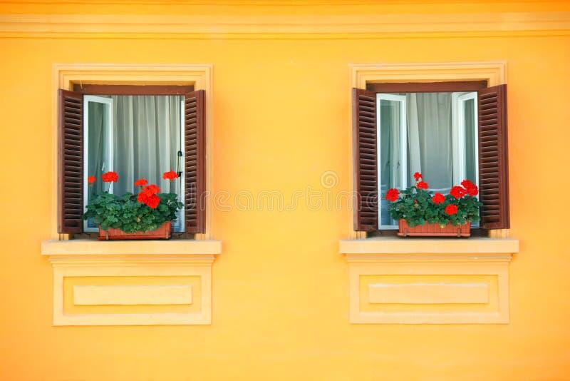 okno ścienne żywe zdjęcie royalty free