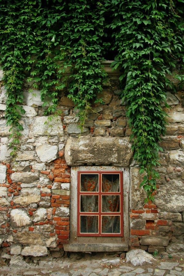 okno. obrazy stock