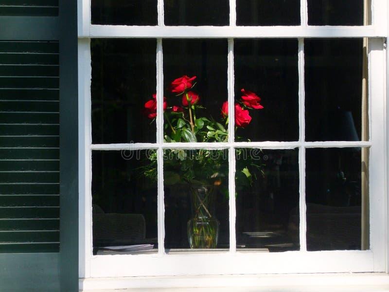 Okno róże zdjęcia stock