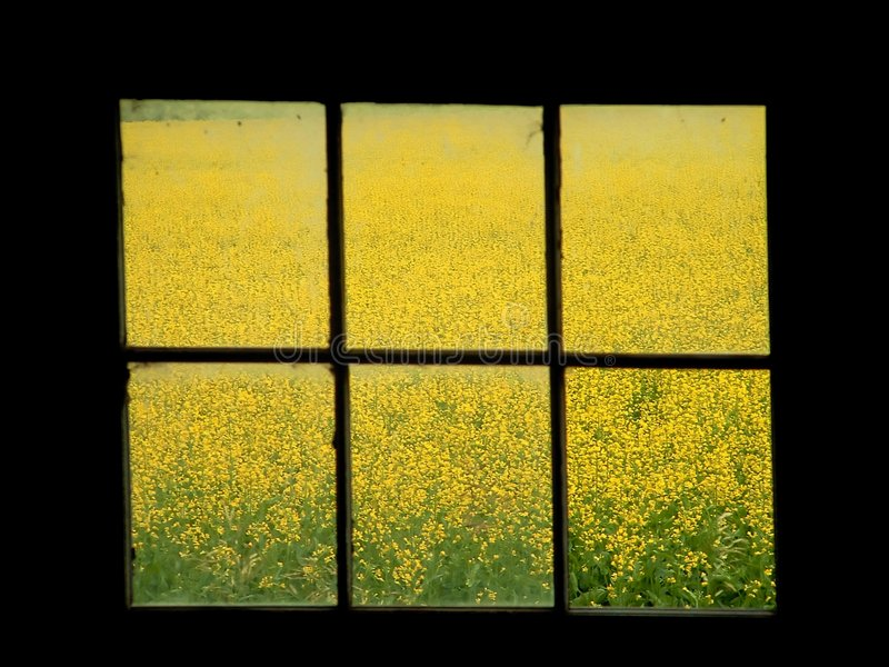 okno siedzenia zdjęcia stock