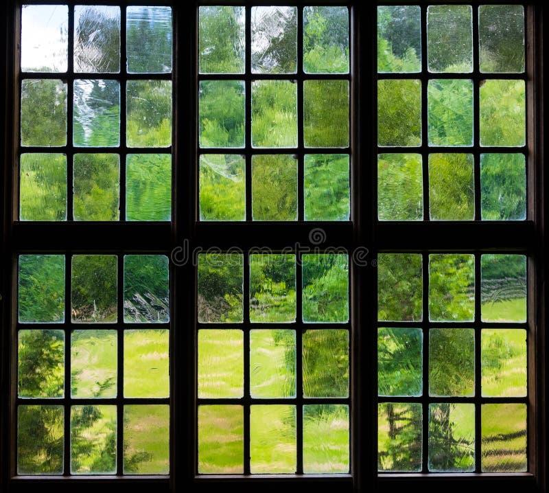 Okno stary dom wiejski inside i ściana z gronowymi liśćmi zdjęcie royalty free