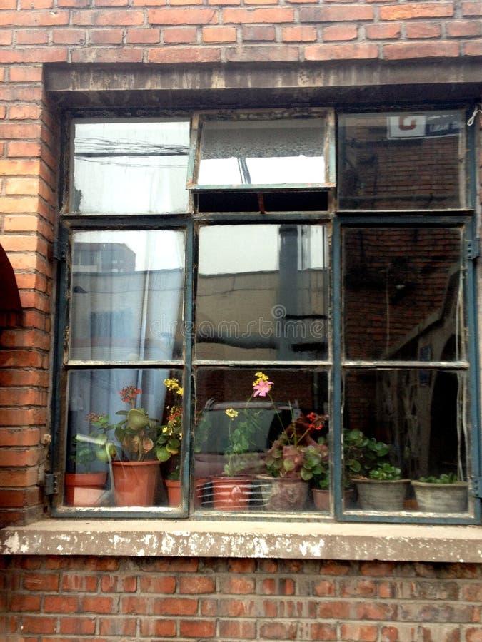 Okno w Pekin zdjęcia stock
