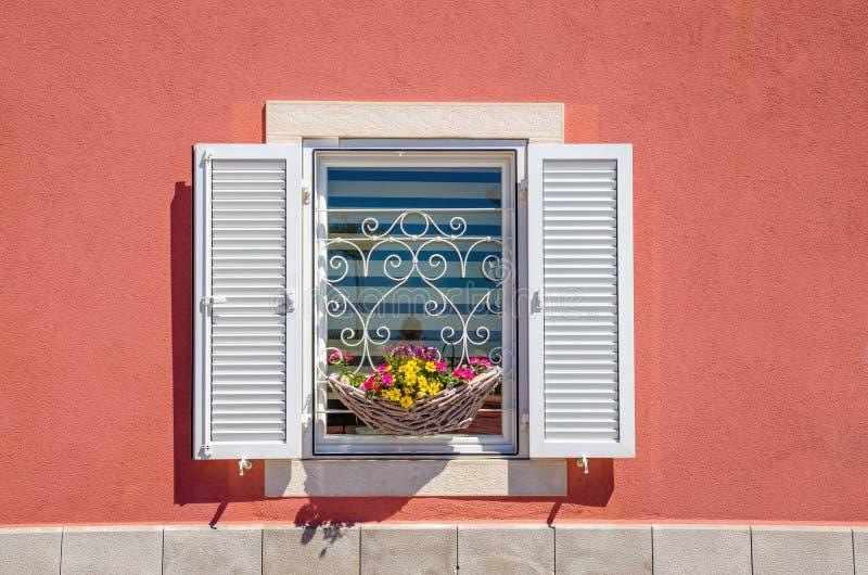 Okno z bielem zamyka i piękny kwitnienie kwitnie przeciw czerwonej ścianie obraz royalty free