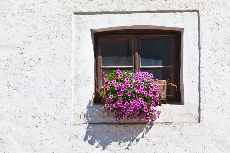 Okno z kolorowymi kwiatami na białej ścianie fotografia stock