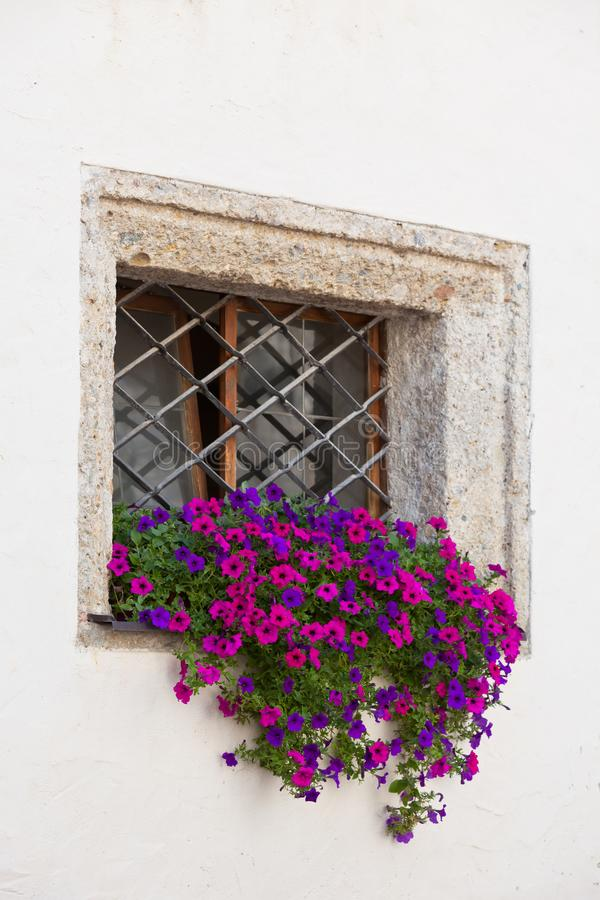Okno z kolorowymi kwiatami na białej ścianie obrazy royalty free