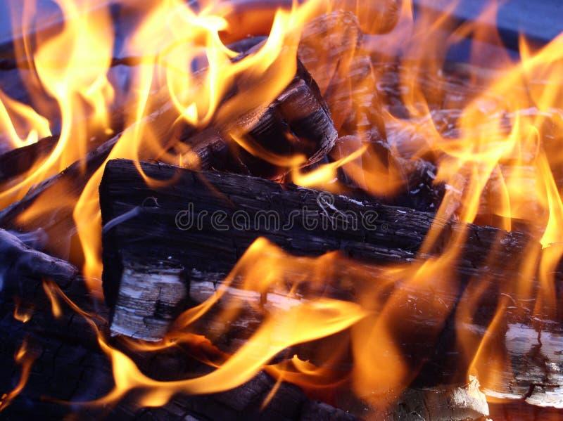 około oplątanie drewnianych płomieni. obrazy royalty free
