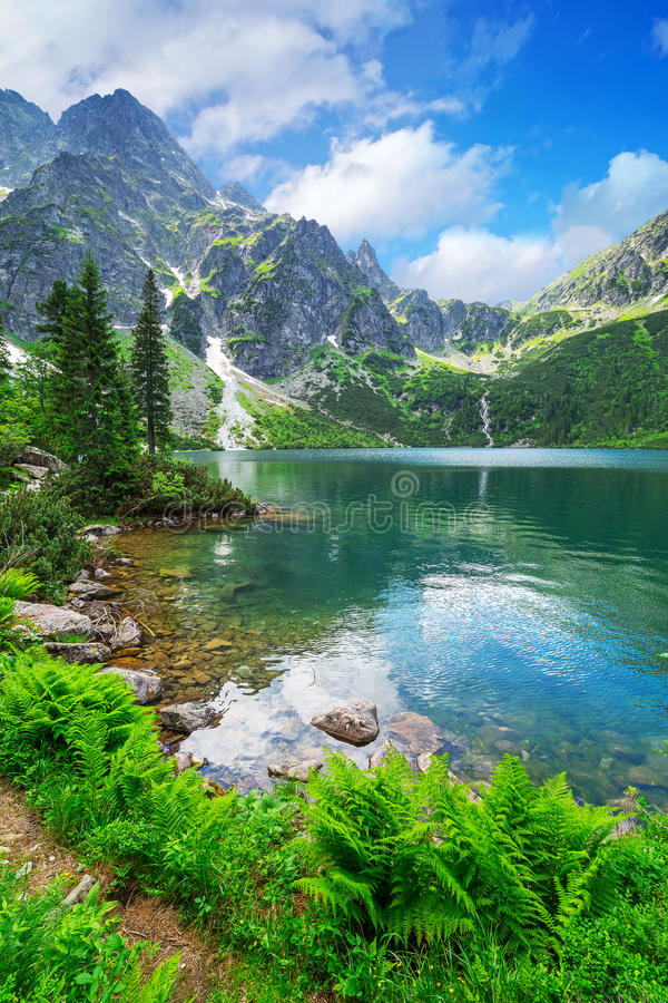 Oko Denny jezioro w Tatrzańskich górach zdjęcie stock