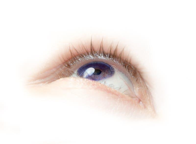 oko purpurowy obraz stock