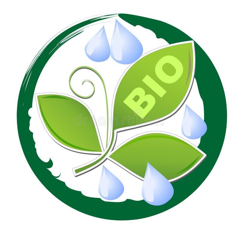 Okrąża etykietkę dla życiorys produktu z zielonymi liścia i wody kroplami w grunge zieleni ramie royalty ilustracja