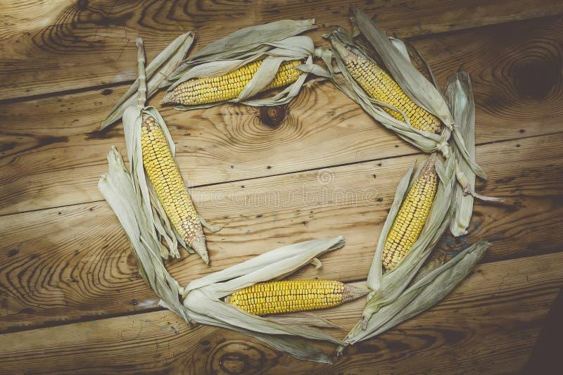Okrąża ramowego robić z słodkimi surowymi kukurydzanymi cobs na drewnie obrazy royalty free