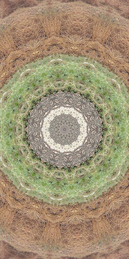 okrąg ilustracji
