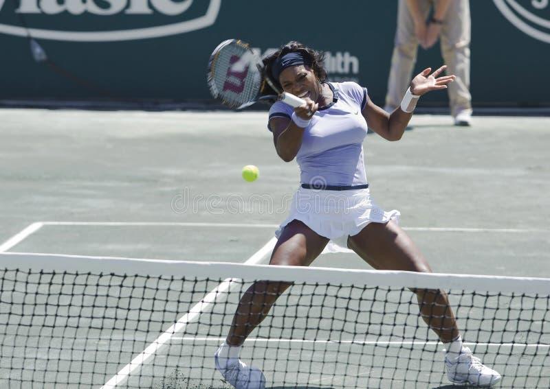 okrąg filiżanka rodzinny Serena Williams zdjęcie stock