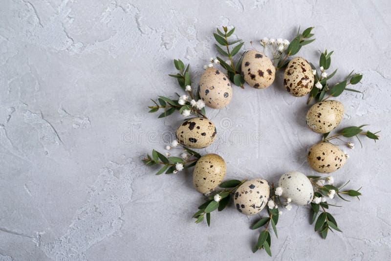 Okrąg granica dla Easter zaproszenia lub karty Wielkanocny wianek z Easter liścia i przepiórki sprigs eukaliptus Na szarym betonu zdjęcia royalty free