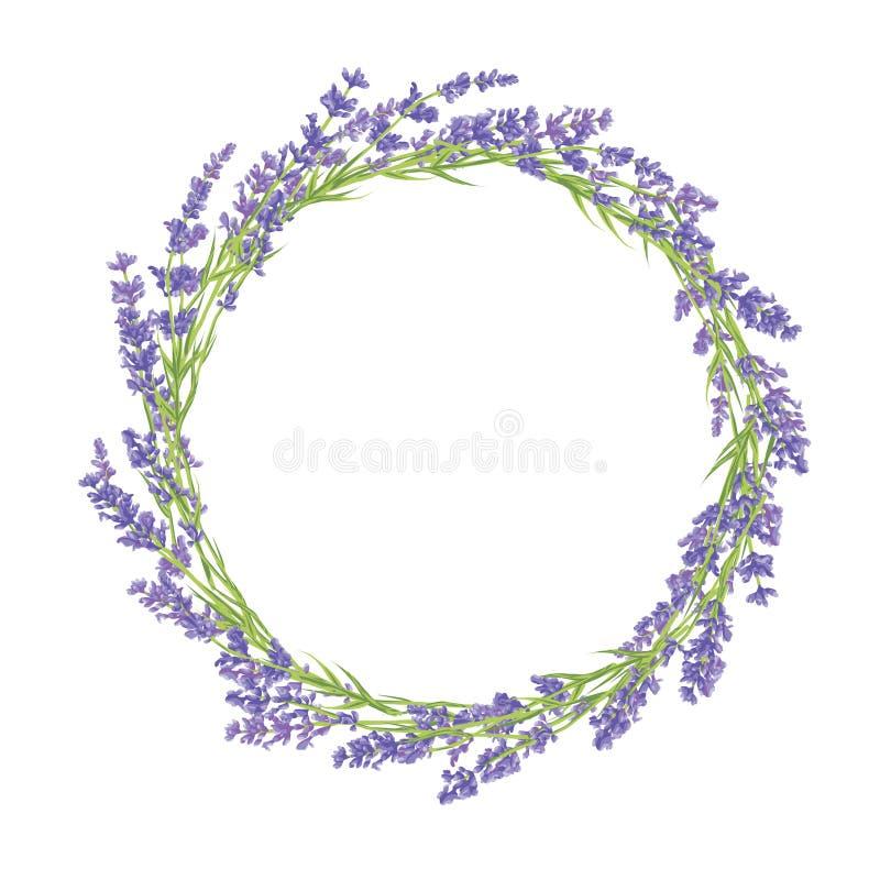 Okrąg lawendowi kwiaty royalty ilustracja