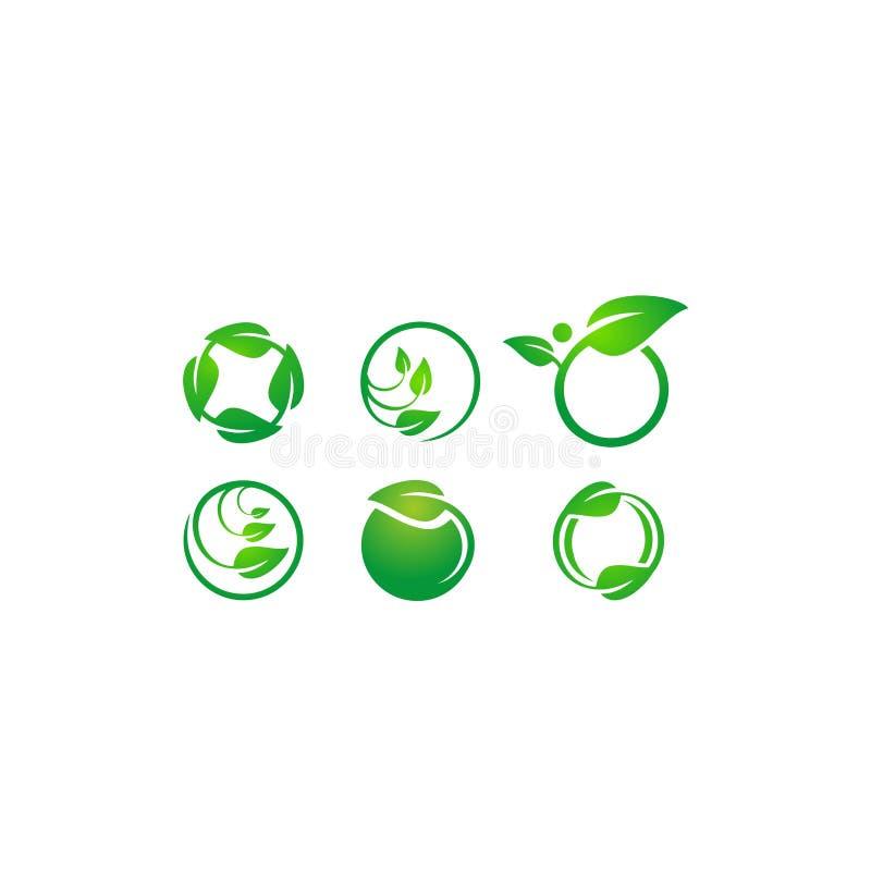 Okrąg opuszcza ekologia loga, rośliny wodna sfera Ustawiająca round ikona symbolu wektorowy projekt obraz royalty free