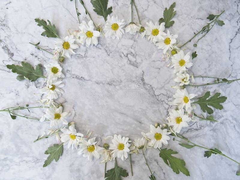 Okrąg rama od lato kwiatów obraz stock