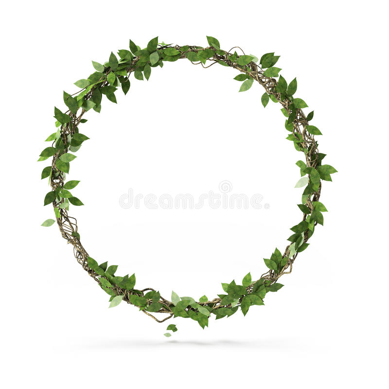 Okrąg zieleni liść zdjęcia stock