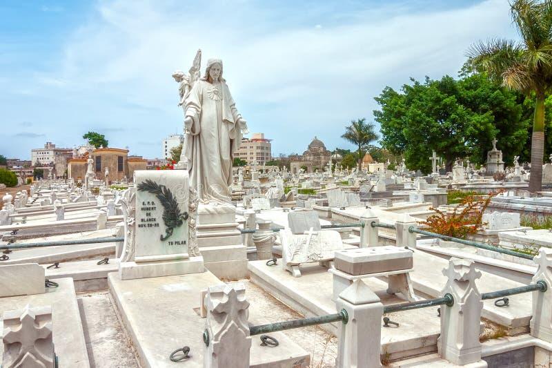 Okrężnicowi Cmentarniani grób i grobowowie fotografia stock