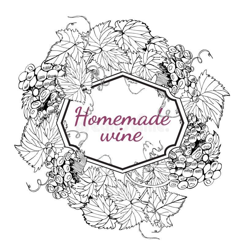 Okręgu skład rama gronowe gałąź Jagody winogrona z liśćmi Monochromatyczna ręka rysujący nakreślenie ja royalty ilustracja