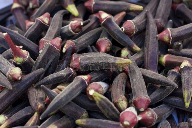 Okra. A hip of dark purple okra on the farmer's market royalty free stock images