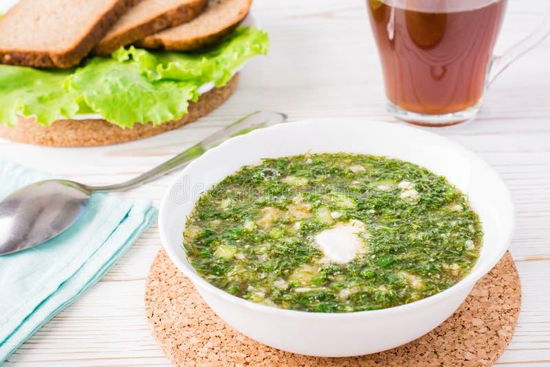 Okroshka är en traditionell rysk maträtt Kall soppa med grönsaken royaltyfri foto