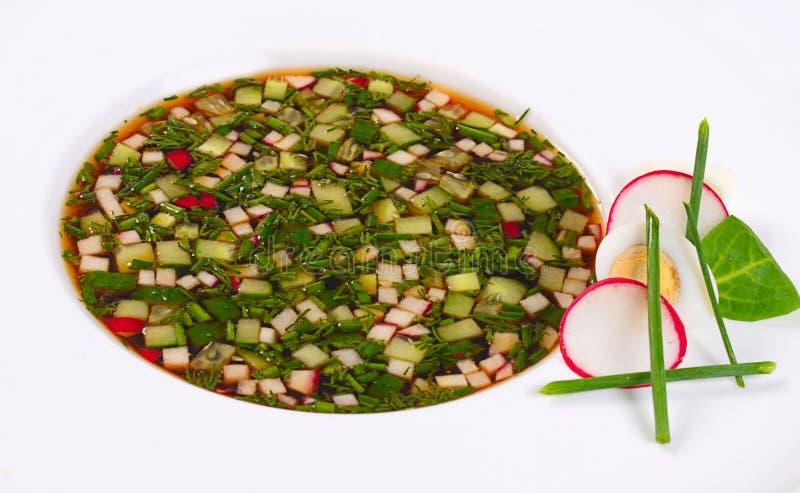 Okroshka от свежих овощей холодный суп стоковые изображения