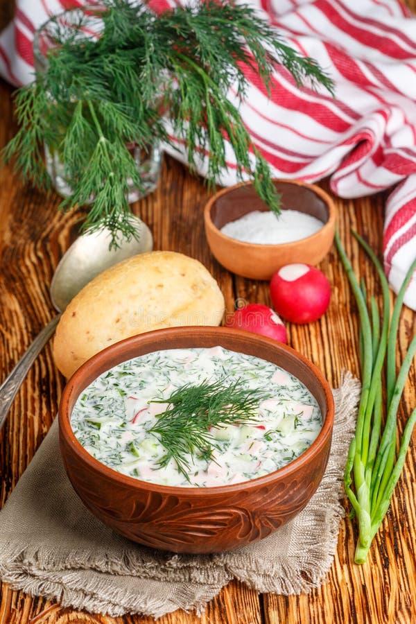 Okroshka Ljus kall yoghurtsoppa för sommar med gurkan, rädisan, ägg och dill arkivfoto