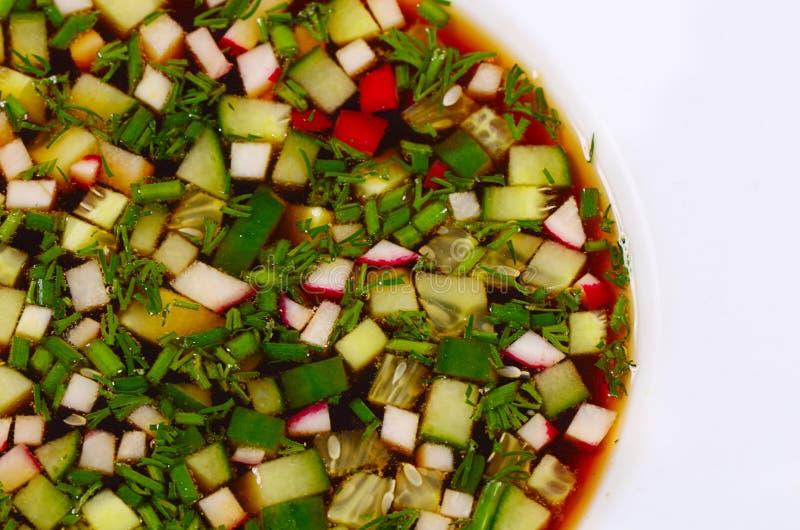 Okroshka od świeżych warzyw zimna zupa fotografia royalty free