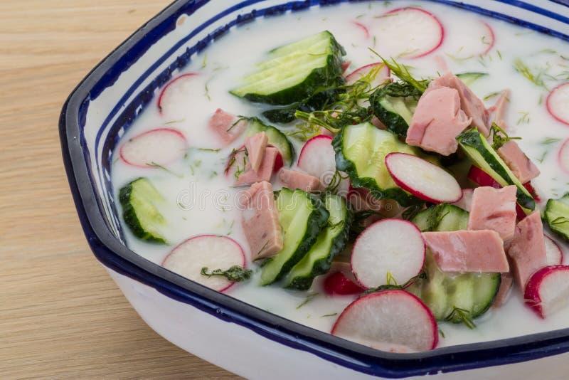 Okroshka. Traditional Russian cold soup - Okroshka royalty free stock photos