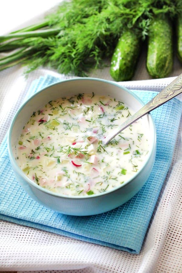 Okroshka - traditionele Russische koude soep met verse komkommer, eieren en dille royalty-vrije stock afbeeldingen
