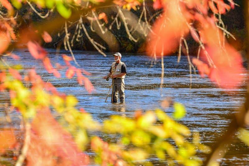 Oktober 2014 Jackson County, NC, der auf dem Tuckasegee-Fluss Flyfishing ist lizenzfreies stockbild