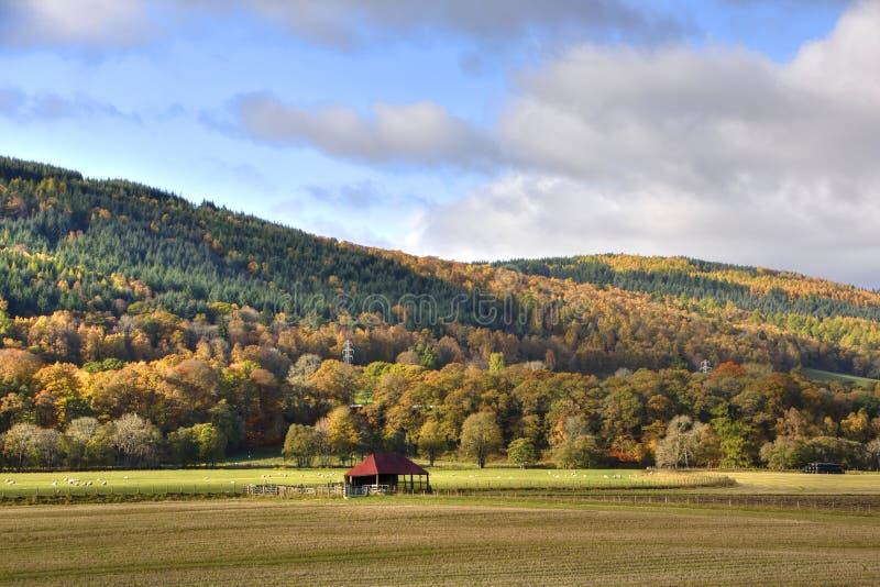 Oktober-Landschap van de Centrale Schotse Hooglanden royalty-vrije stock fotografie