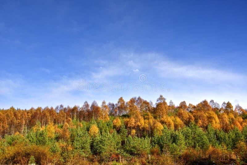 Oktober-Landschap van de Centrale Schotse Hooglanden royalty-vrije stock afbeeldingen