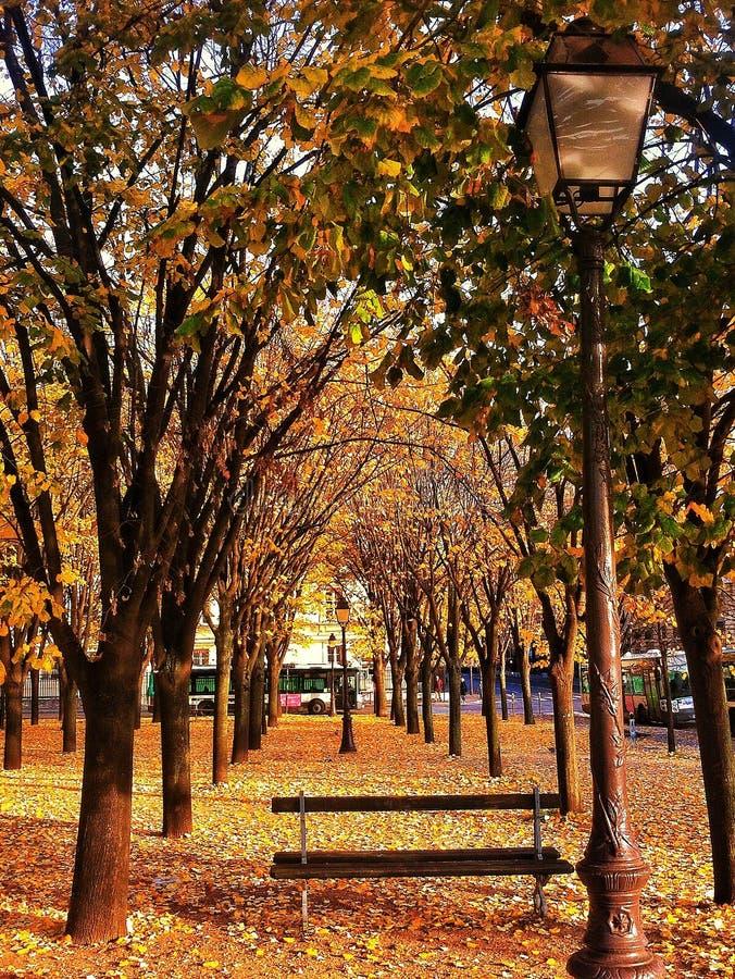 Oktober in Paris lizenzfreies stockbild