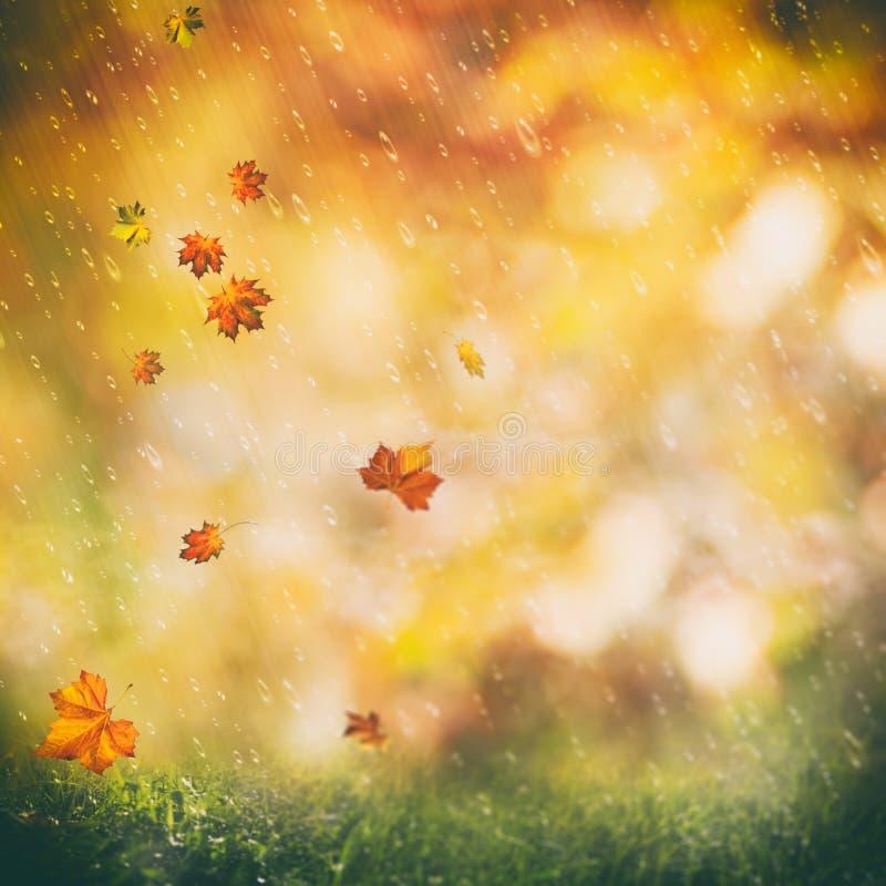 Oktober-Regen, herbstliche Hintergründe der Schönheit lizenzfreie abbildung