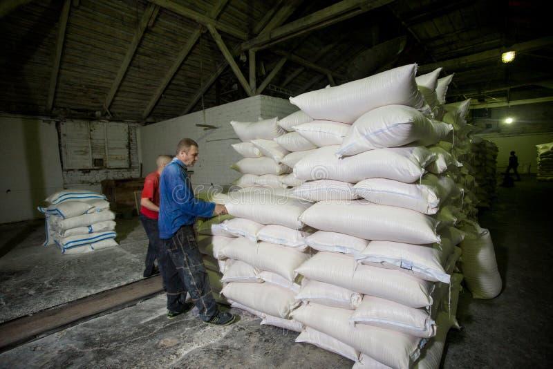 14. Oktober 2014 ukraine Kyiv Arbeitskr?fte im Unternehmen Zwei junge kaukasische M?nner arbeiten als Lader an einer alten Fabrik lizenzfreies stockbild