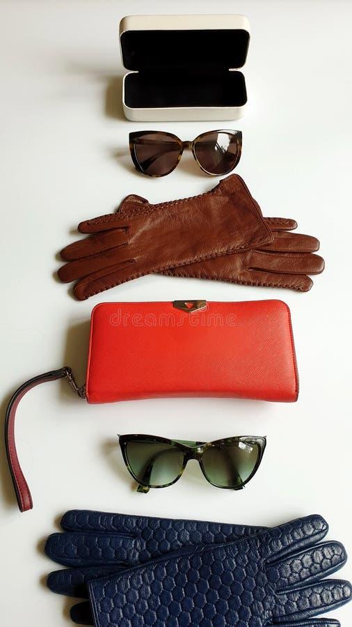 Okulary przeciwsłoneczni Projektują Czerwonych kiesa portfla pudełka rzemiennych rękawiczek brązu czerni błękitnych kobiet akceso zdjęcie royalty free