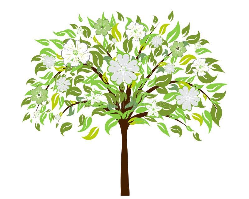 okwitnięcia drzewo ilustracji