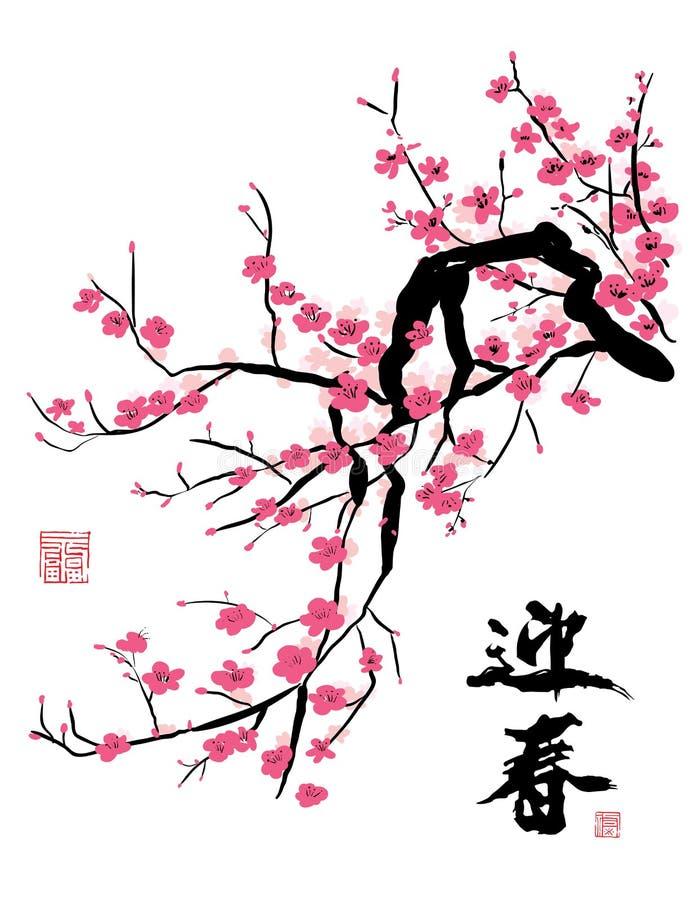 okwitnięcia wiśni wiosna ilustracji