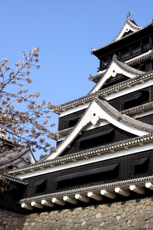 okwitnięcie grodowy czereśniowy Kumamoto obraz royalty free