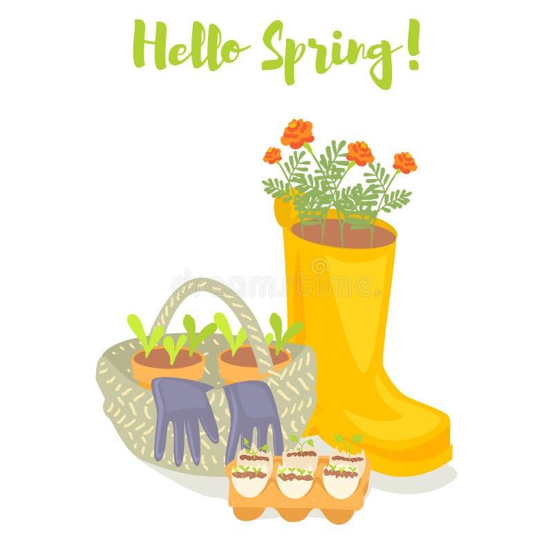 Olá! bandeira de jardinagem da mola A bota de borracha, cesta, luvas, plântulas, cravo-de-defunto floresce Ilustração do vetor ilustração do vetor